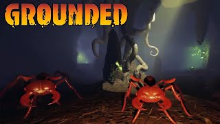 EXPLORING OUR FIRST CAVE | GROUNDED EP2