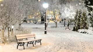 Парк. Снег. Скамья. Фонарь - Футаж для видеомонтажа в Full HD(1080p) качестве бесплатно