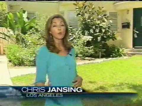 Chris Jansing Blue Dress