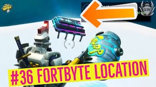 Accessible by Sentinel on a Frozen Island! Fortnite Fortbyte 36 Location! Season 9 Battle Pass!