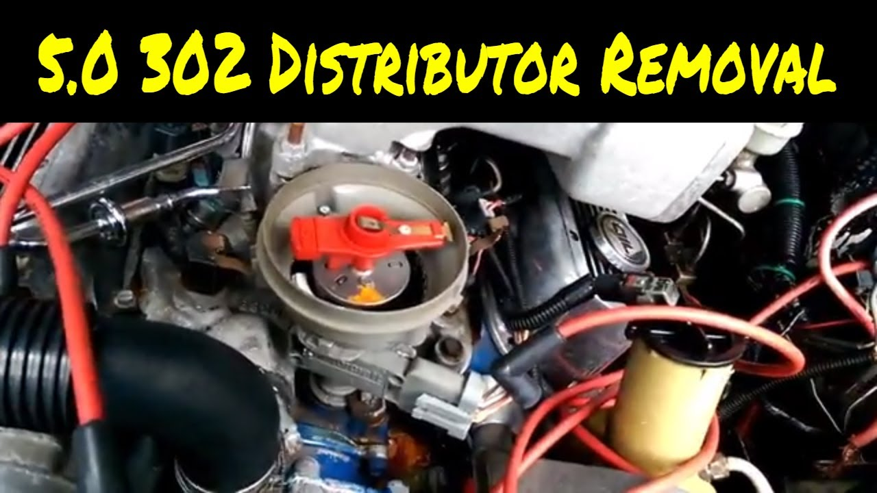 5 0 302 ford mustang distributor removal how to