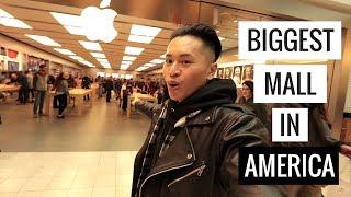 Người Mỹ Có Quý Người Việt? - Cùng Shop ở Mall Lớn Nhất Nước Mỹ | Unbox Palace, Calabasas, FOG