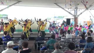 総踊り2  道の駅えびの2015