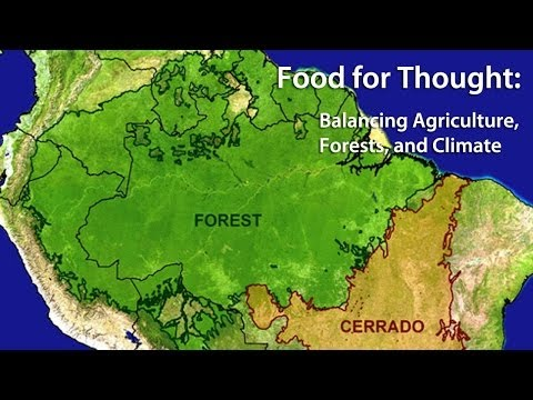 Food for Thought: Balancing Agriculture, Forests, and Climate