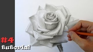 Как нарисовать розу.  Учимся рисовать розу карандашом.