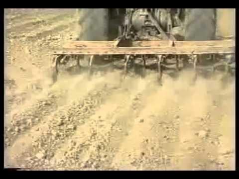 1 Wheat Production Technology Pakistan part 1 Dr Ashraf Sahibzada   YouTube