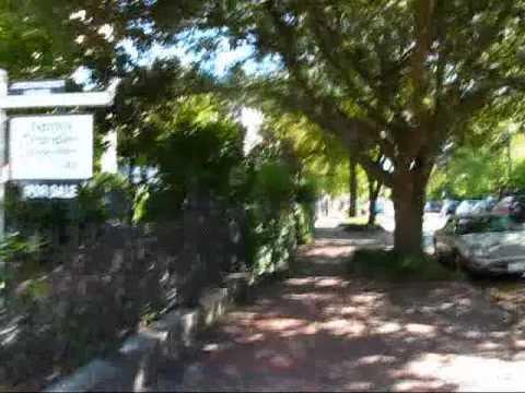Virginia travel: Cobble-stoned Freemason Street in Norfolk - historic district