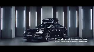 Audi Ski and luggage box