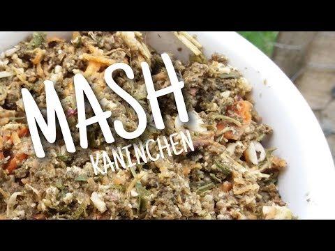 MASH für Kaninchen ?! + DIY Mash 🐇🌿 | Kaninchenstar