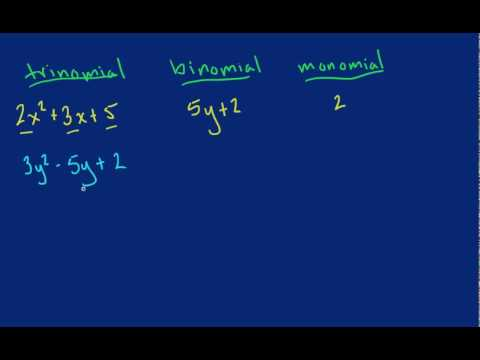 Difference Between Trinomial Binomial Monomial Youtube