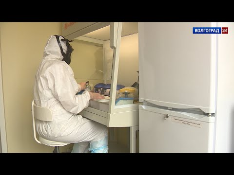В Волгоградской области зарегистрировано 172 случая заболевания коронавирусом, два – летальных