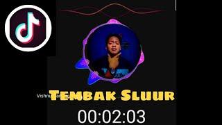 Download Lagu DJ - Tembak Sluur [REMIX] - VIRAL TIK TOK mp3