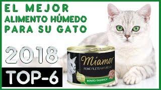 El mejor 🔥 Alimento Húmedo para su Gato 😸 TOP-6 🔥