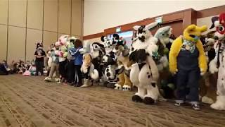 Califur XIII - Sharks & Minnows (fursuit games)