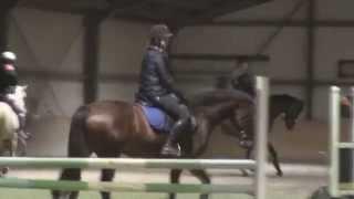 raws Everlie {New Horse}
