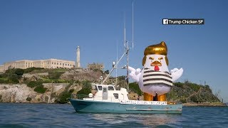 Giant Trump chicken to sail on San Francisco Bay once again