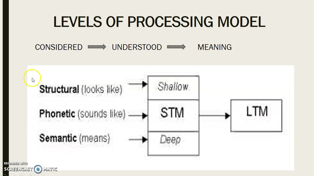The levels of processing model essay
