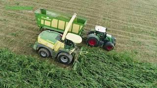 EasyCollect im Lagermais – Frühe Ernte nach Orkan in Niederbayern thumbnail