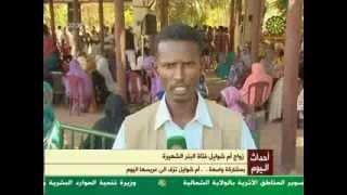 أم شوائل من عش الثعابين الي عش الزوجية ...  الف مبروك (احمد الامين )