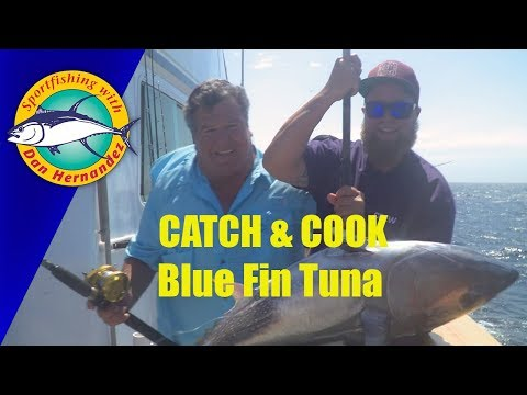 Catch And Cook Bluefin Tuna - Ocean Odyssey| SPORT FISHING