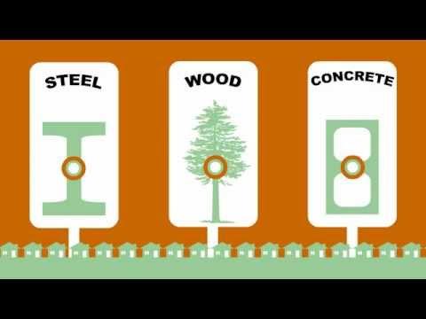 Forest Fact Break: Carbon Capture video