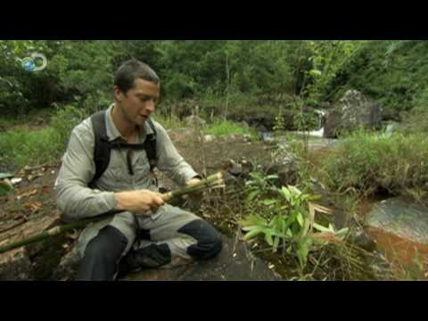 Man vs. Wild - Vietnam - Catfishing