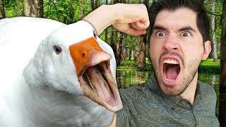 ME RETIRO DE YOUTUBE! Me Dedicaré a Entrenar Patos