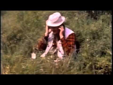 Trout Madness – Robert Traver (John Voelker) - YouTube