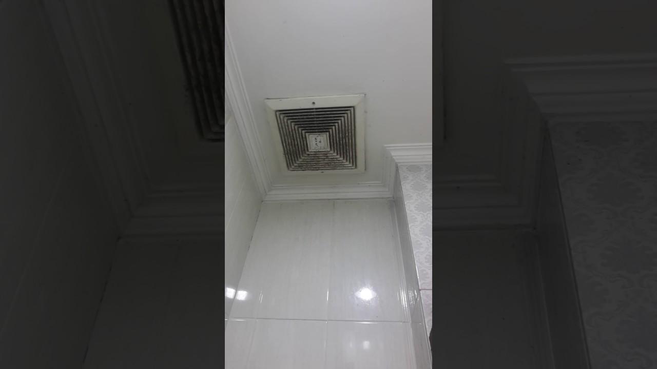 Sekai Exhaust Fan Youtube Wef 890 8 Wall