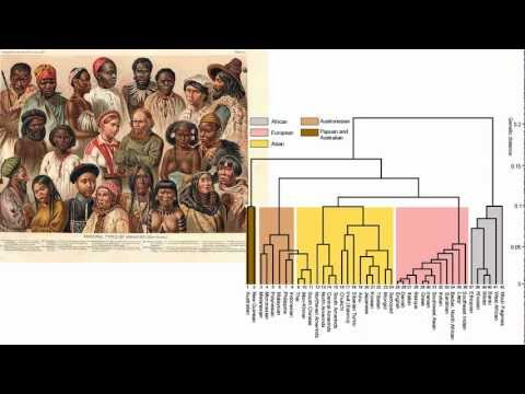 The science of Human Races. King James explains