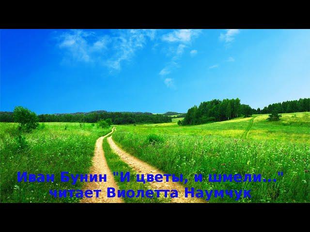 Изображение предпросмотра прочтения – ВиолеттаНаумчук читает произведение «И цветы, и шмели, и трава, и колосья...» И.А.Бунина