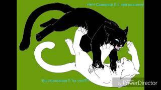 """Коты-Воители сериал """"▪[Ближе к сердцу]▪11 cерия.Чит.Оп.👇"""