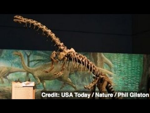 World S Oldest Dinosaur Embryos Discovered In China Youtube