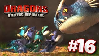 BERK BRAWLERS INITIATION!!! | DRAGONS : Rise Of Berk - Ep16 HD