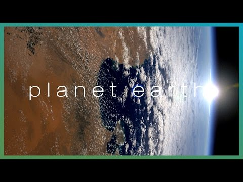 YouTubers' Favourite Planet Earth Moments