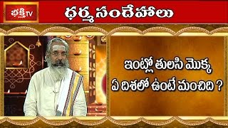Where should we place Holy Basil or Tulsi plant in The House? || Dharma Sandehalu || Bhakthi TV