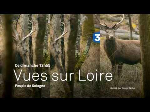 """Bande annonce du documentaire """"Le peuple de Sologne"""""""