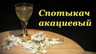 Рецепт Спотыкача, акациевый