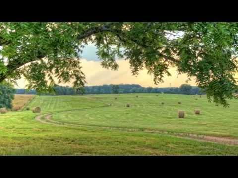 Choose Henry County, GA - Living Here