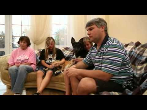 Рика, Донна, Лапа и Рыжуля ищут хозяина - Семейный Пес - Интер