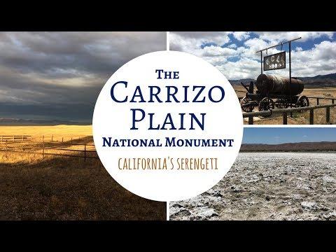 Carrizo Plain National Monument ~ California's Serengeti!