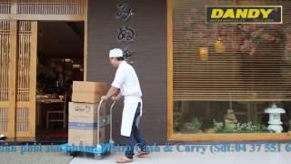Toàn cảnh về các model xe đẩy hàng Dandy Nhật Bản