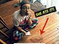 FUNNY POOP PRANK GONE WRONG | The Zebra Tribe