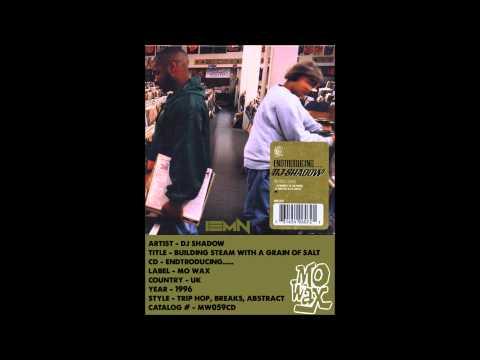 (((IEMN))) DJ Shadow - Building Steam With A Grain Of Salt - Mo Wax 1996 - Trip Hop