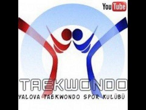 Yalova Taekwondo Spor Kulübü 2016 Müsabaka Performansları