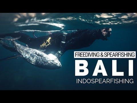 Bali Freediving And Spearfishing