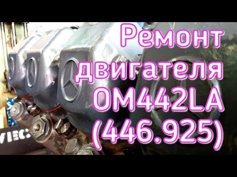 Ремонт двигателя ОМ442LA (446.925)