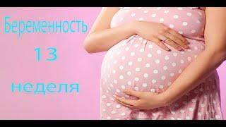 видео 13 неделя беременности (1 триместр)