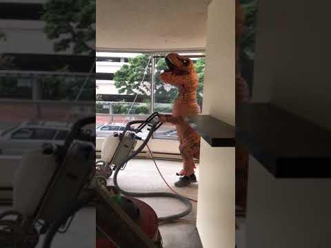 T-Rex Concrete polishing training