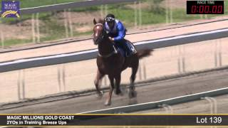 Lot 139 - 2YOs in Training Breezeup Thumbnail